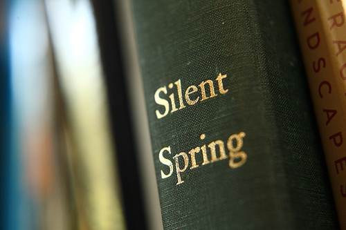 silent spring thesis statement