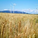Wind farm by Idaho National Laboratory