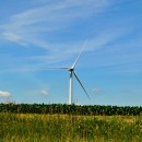 windfarm by Tom via flickr