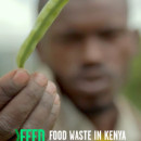 Food-Waste-in-Kenya_report-by-Feedback-212x300