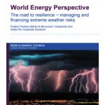 The-road-to-resilience-managing-and-financing-extreme-weather-risk-216x294
