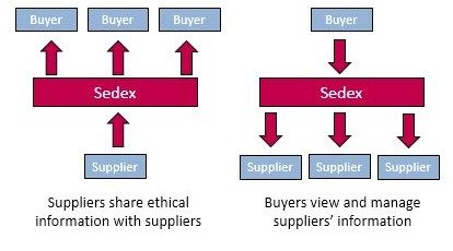 Figure 1, Sedex collaboration