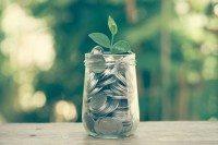 Green Money Pot