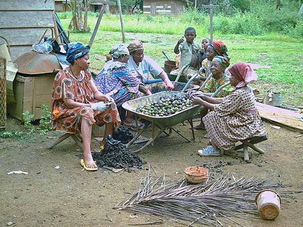 WOMEN NUTS GROUP
