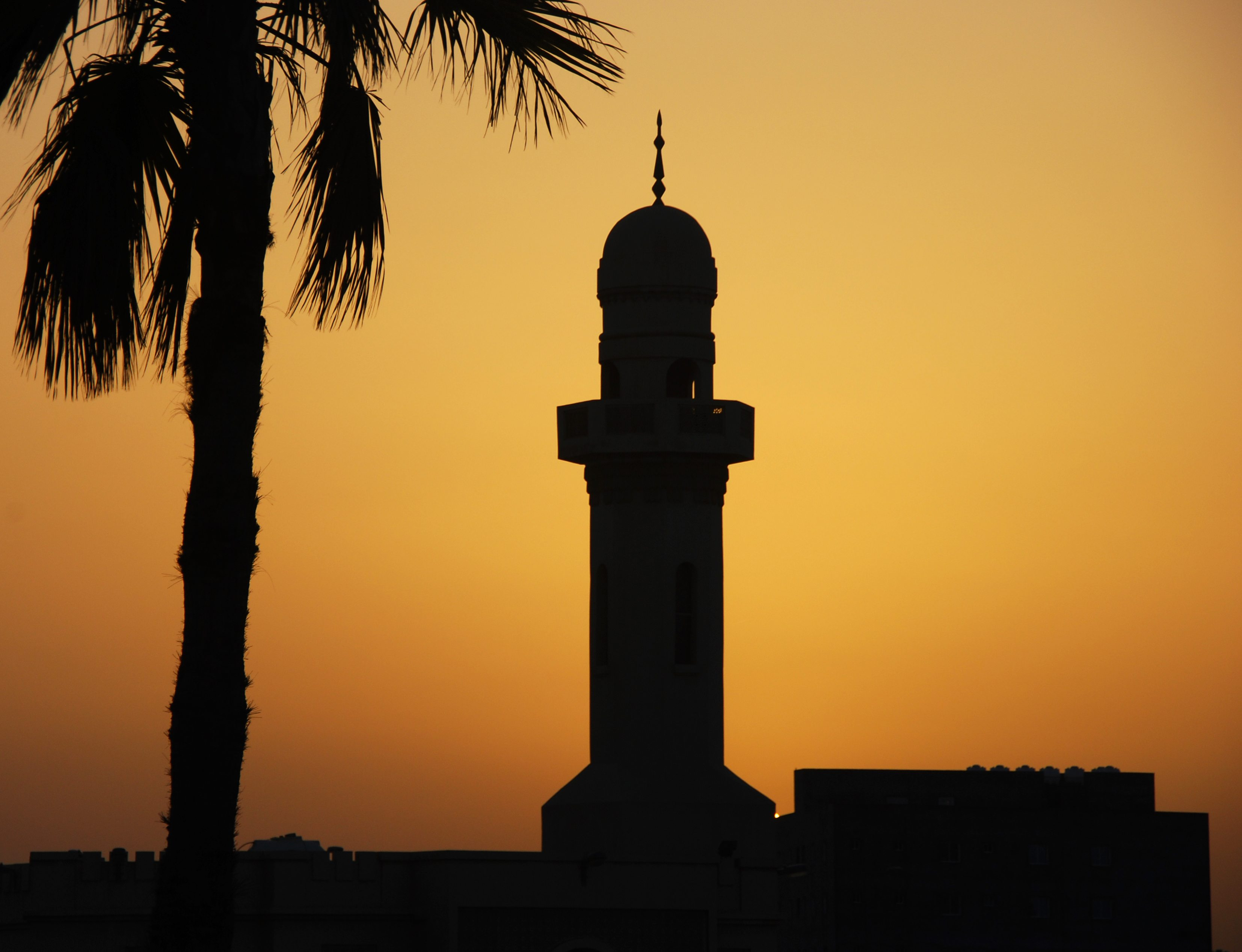 islam and muslims There are no real differences between islam and jihad muslims are also expected to wage a physical jihad when their nations or communities are invaded by foreign.