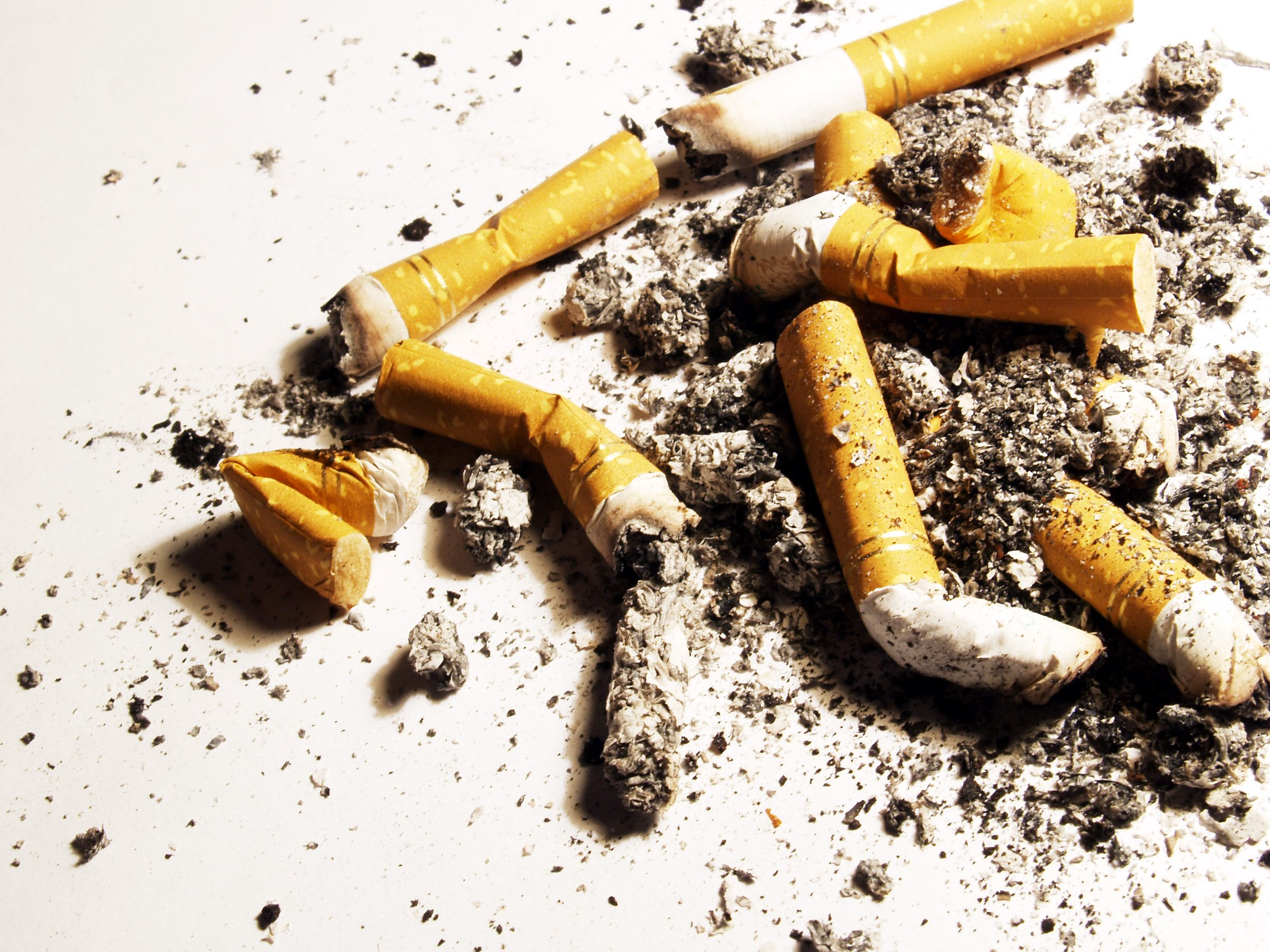 an introduction to the lawsuits against tobacco companies Essays related to the dangers of tobacco 1 tobacco are lawsuits against tobacco companies justified are lawsuits against tobacco companies justified.