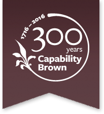 capability brown logo