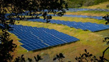 Solar farm by Michael Mees via Flickr