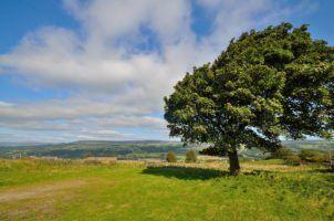 Yorkshire Moors by James Elliman