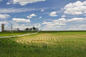 Farm By cjuneau Via Flickr