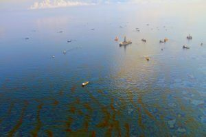 Deepwater Horizon Oil Spill By Green Fire Productions Via Flickr