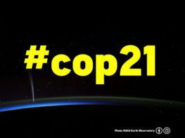 WWF Scotland Comment On COP21 Team Award