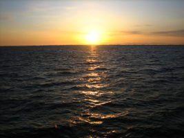 Protected UK Ocean Will Rise To Four Million Square Kilometres