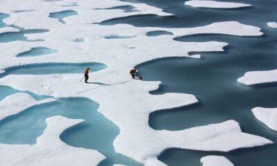 WWF Comment On European Union's Climate Action