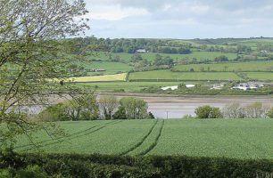farming-eutrophicationhypoxia-via-flickr