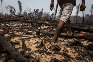 indonesian-forest-fires-via-greenpeace