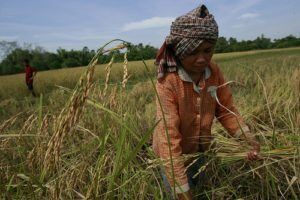 farming-poverty