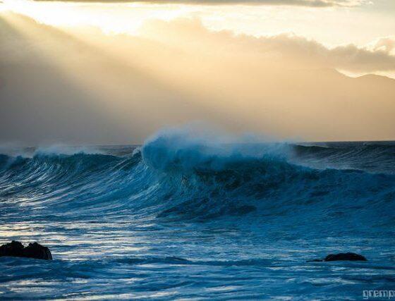 WWF Scotland React To Installation Of Tidal Turbine