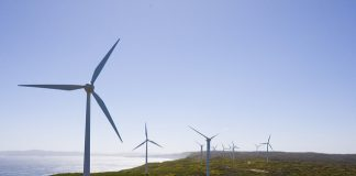 Albany Wind Farm By Lawrence Murray Via Flickr