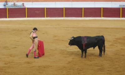 bullfight-spain-by-christian-dalera-via-flikr
