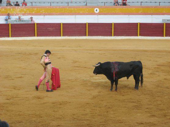 bullfight-spain-by-christian-dalera-via-flikr