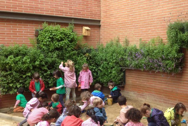 Vertical Gardens In Schools Receive Funding Boost