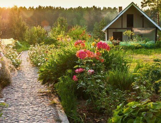 Image Source: http://www.rodalesorganiclife.com/sites/rodalesorganiclife.com/files/articles/2016/05/gardenlandscape_scorpp_102522.jpg
