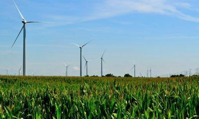 Illinois Wind Farm by tom via flickr