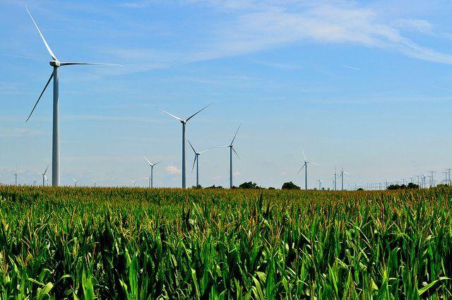 Illinois Wind Farm by tom via flickr