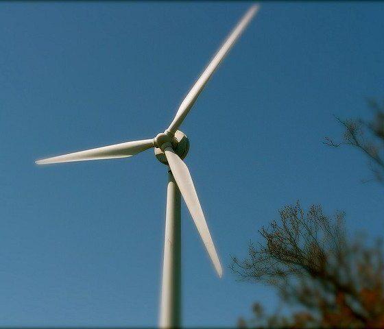 Sustainability by Kyle MacKenzie via Flickr