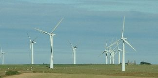 Windfarm by National Rural Knowledge Exchange via Flickr
