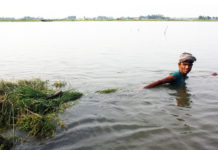 Bangladesh Demonstrate Coping With Climate Change As Talks Begin