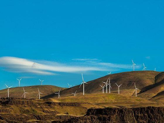 RenewableUK Chief Exec Presents Low Cost Of Wind To The House Of Lords