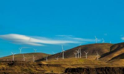 renewable-by-sheila-sund-via-flickr