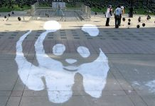 Sidewalk Panda by John Vetterli via flickr