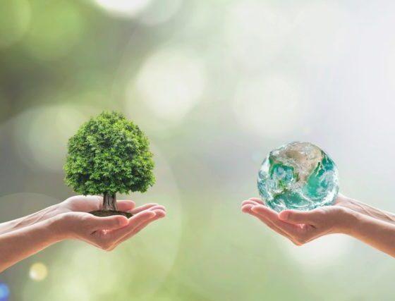 tree-world-hands
