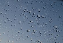 Water droplets by Peter Rosbjerg via flickr