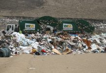 At the landfill by Redwin Law via flickr