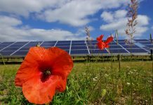 'Energy Barn' Development Partnership Introduced By Anesco And Green Hedge Energy UK