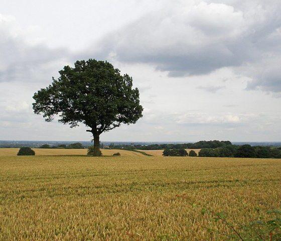 Corley Landscape by Amanda Slater via flickr