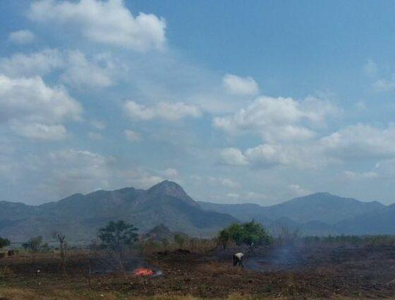 mozambique-by-douglas-drake