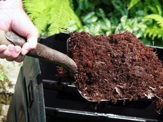 consider composting