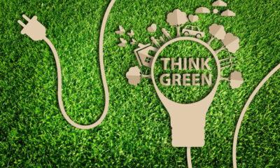 green energy or renewable energy