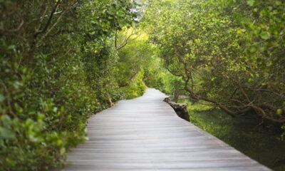 eco-tourism in australia