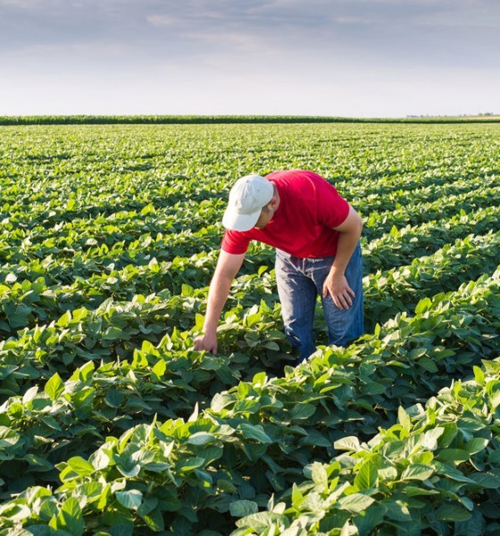 agriculture and farming industry