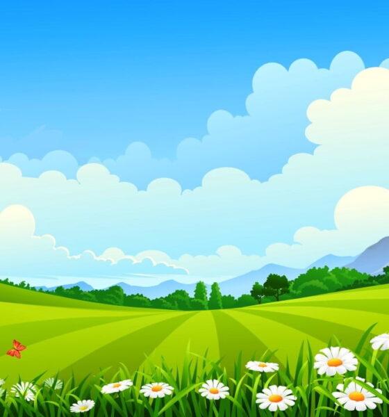 Greener Landscaping