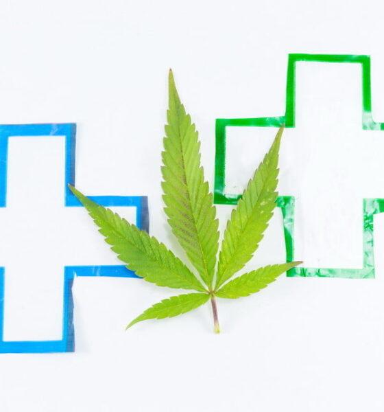 legal pot sustainability