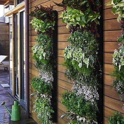 develop green wall