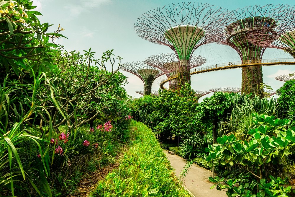 eco-friendly travel