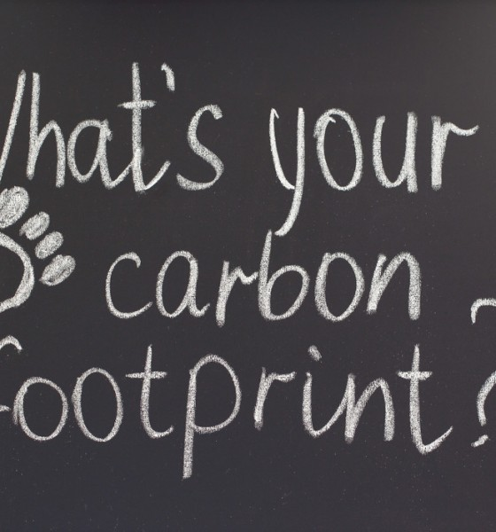 what is your carbon footprint